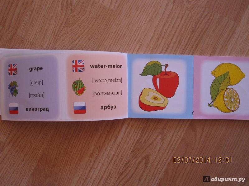 Иллюстрация 6 из 16 для Овощи. Фрукты. Коллекция карточек - Лариса Зиновьева   Лабиринт - книги. Источник: Русских  Юлия