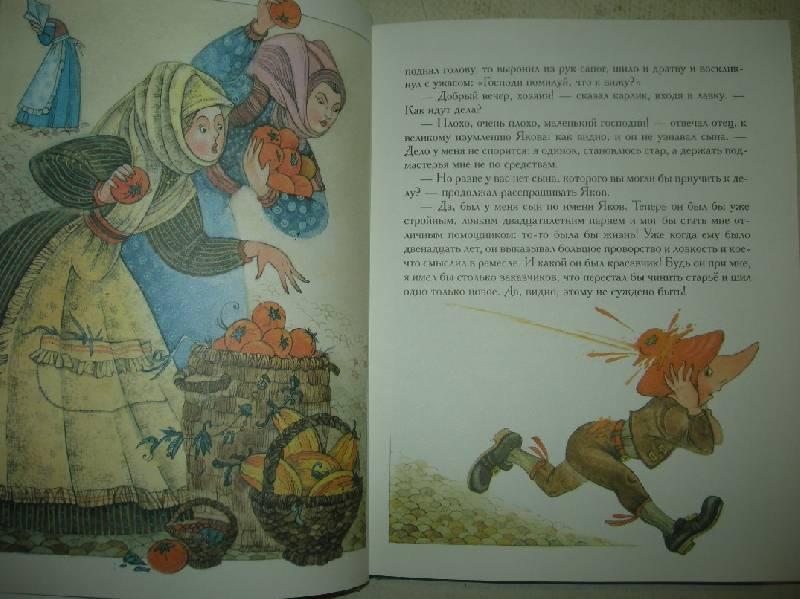 Иллюстрация 21 из 35 для Сказки - Вильгельм Гауф | Лабиринт - книги. Источник: Мартынова  Анна Владимировна