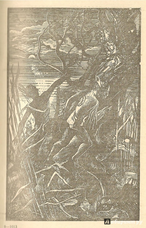 Иллюстрация 5 из 7 для Зверобой - Джеймс Купер | Лабиринт - книги. Источник: АГП
