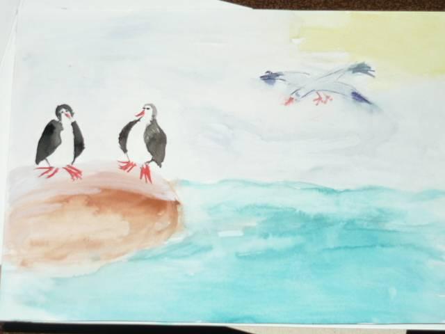 Иллюстрация 1 из 8 для Краски акварель Медок 12 цветов (8С 367-08) | Лабиринт - канцтовы. Источник: Ромашка:-)