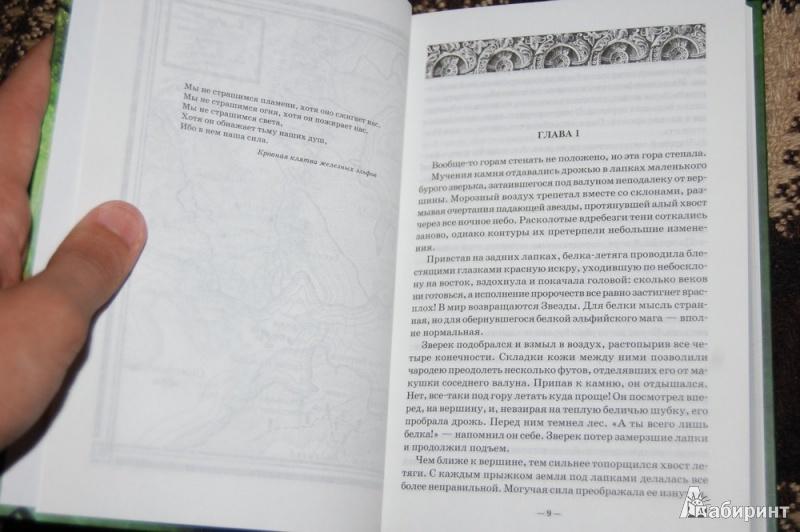 Иллюстрация 16 из 21 для Хроники железных эльфов. Книга 1. Тьма, выкованная в огне - Крис Эванс | Лабиринт - книги. Источник: evil_academic