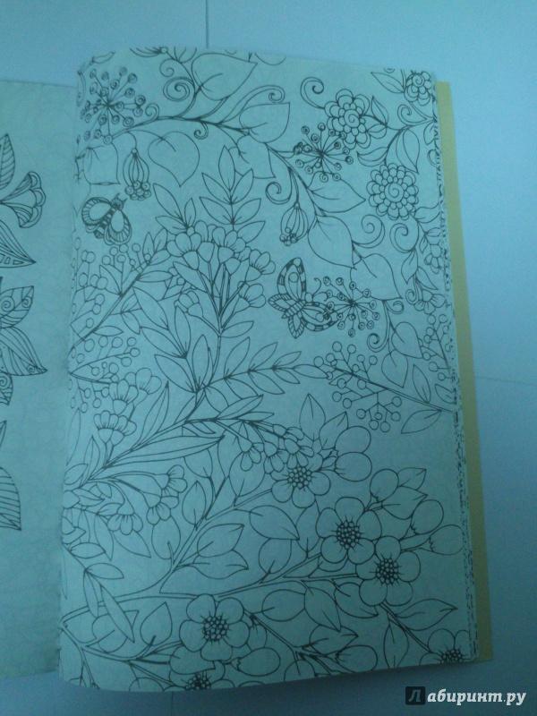 Иллюстрация 8 из 30 для Волшебный сад. Раскраска для ...