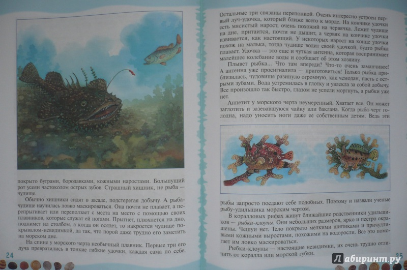 Иллюстрация 7 из 39 для Тайны морского дна: книга для чтения детям - Геннадий Целищев   Лабиринт - книги. Источник: Астанина  Олеся