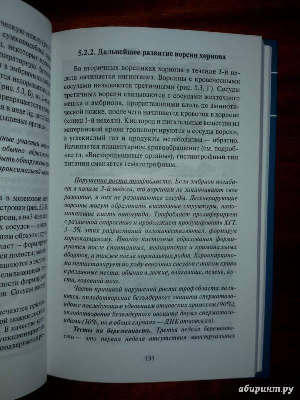 Иллюстрация 9 из 37 для Эмбриология. Учебное пособие - Студеникина, Слука   Лабиринт - книги. Источник: olegiv