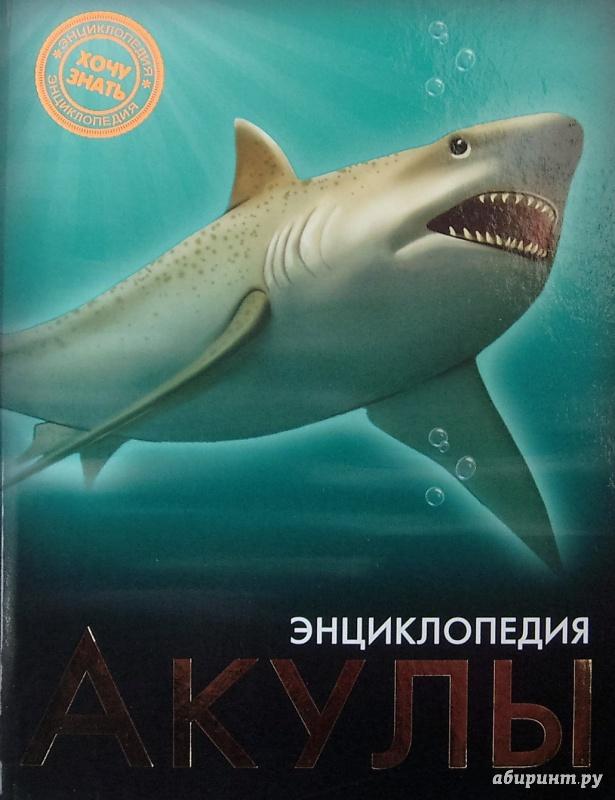 Иллюстрация 7 из 37 для Акулы | Лабиринт - книги. Источник: Соловьев  Владимир