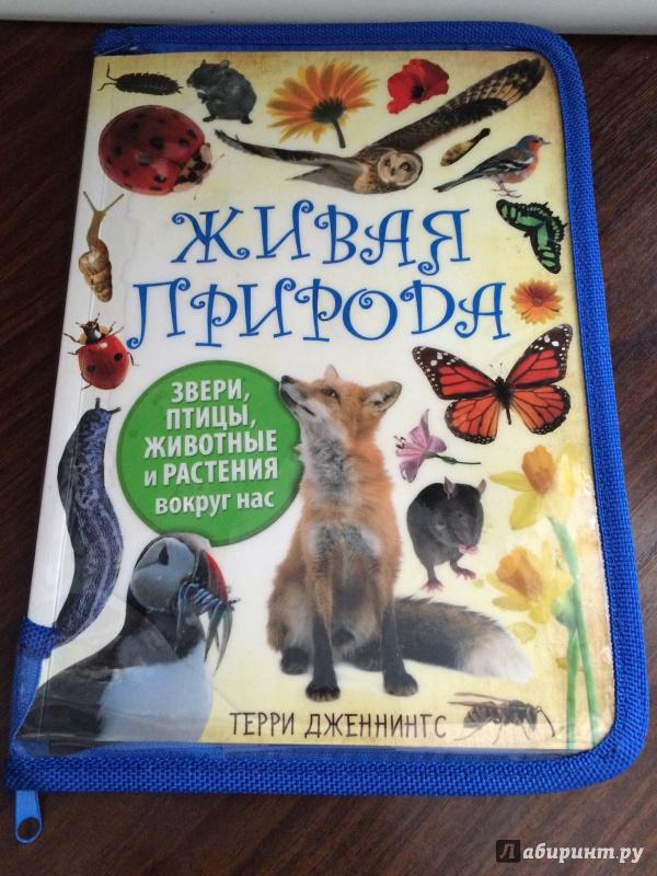 Иллюстрация 2 из 19 для Живая природа. Звери, птицы, животные и растения вокруг нас - Терри Дженнингс   Лабиринт - книги. Источник: Mrs.Paprika