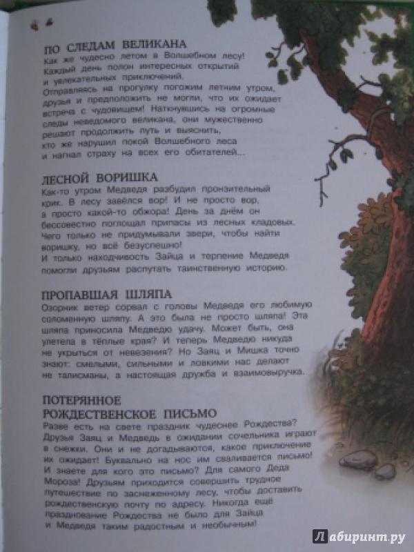 Иллюстрация 10 из 48 для Сокровище Острова Бузины - Валько | Лабиринт - книги. Источник: Анна888