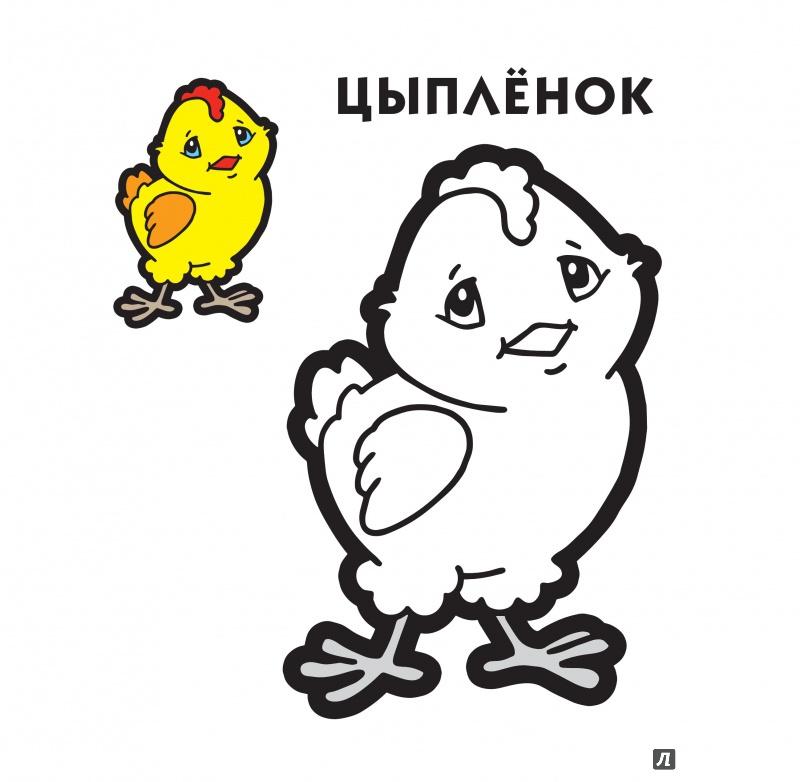 общественная веселый цыпленок рисунок карандашом панно, мох