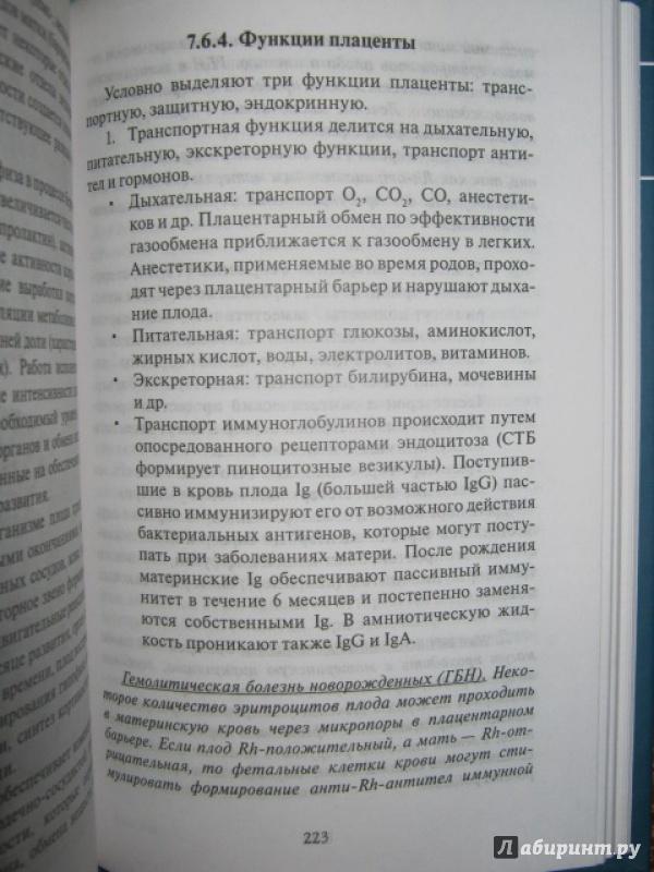 Иллюстрация 33 из 37 для Эмбриология. Учебное пособие - Студеникина, Слука | Лабиринт - книги. Источник: Евгения39
