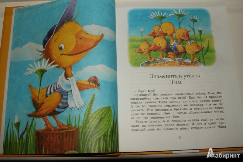 Иллюстрация 8 из 21 для Знаменитый утёнок Тим - Энид Блайтон   Лабиринт - книги. Источник: Павлинова  Ирина Евгеньевна