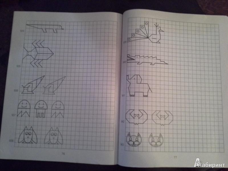Иллюстрация 2 из 6 для 1000 узоров - Узорова, Нефедова | Лабиринт - книги. Источник: Викка