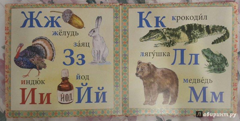 Иллюстрация 11 из 14 для Азбука | Лабиринт - книги. Источник: Давыдова  Амина