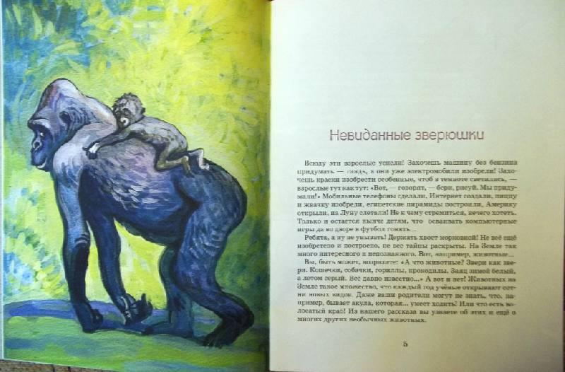 Иллюстрация 5 из 28 для Невиданные зверушки - Ольга Велейко | Лабиринт - книги. Источник: Ирина Викторовна