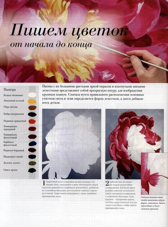 Иллюстрация 4 из 20 для Акриловая живопись. Рисуем цветы - Лекси Санделл | Лабиринт - книги. Источник: Panterra