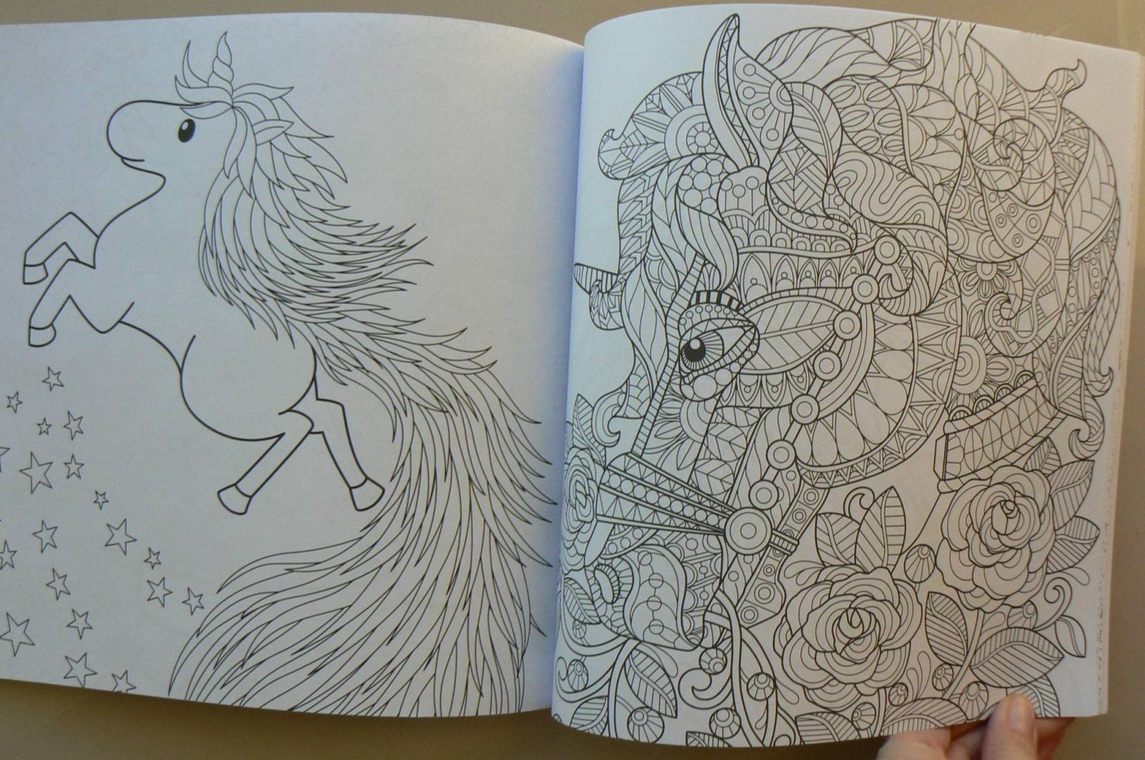 Иллюстрация 40 из 42 для Единороги. Раскраска-антистресс ...