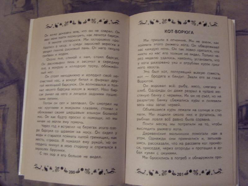 Иллюстрация 4 из 9 для Книга для чтения дома и в детском саду: программа обязательного дошкольного чтения | Лабиринт - книги. Источник: Золотая рыбка