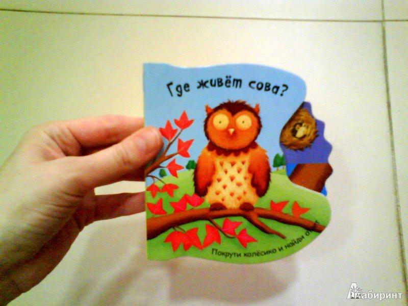 Иллюстрация 3 из 18 для Где живет сова? - Татьяна Хабарова | Лабиринт - книги. Источник: Мила