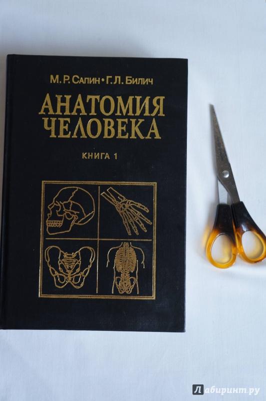 Иллюстрация 1 из 19 для Анатомия человека: Учебник: Книга 1 - Сапин, Билич   Лабиринт - книги. Источник: sakedas
