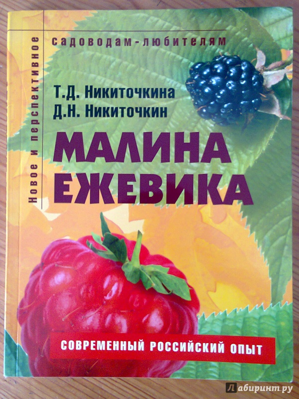 Иллюстрация 1 из 9 для Малина, ежевика: Пособие для садоводов-любителей - Никиточкин, Никиточкина | Лабиринт - книги. Источник: Sonya Summer