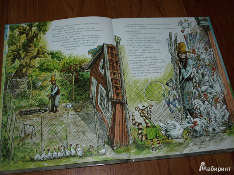 Иллюстрация 16 из 57 для Переполох в огороде - Свен Нурдквист   Лабиринт - книги. Источник: Гусева  Анна Сергеевна