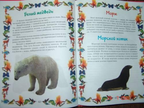 Иллюстрация 1 из 2 для Моя первая книга о животных - Т. Мореева | Лабиринт - книги. Источник: АленаТюрина
