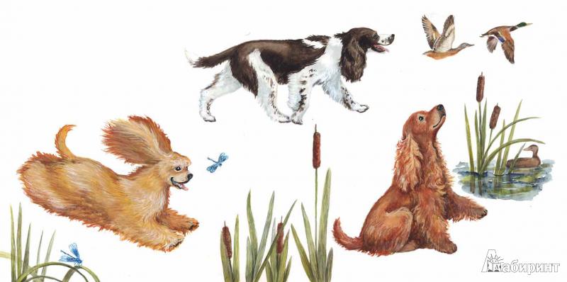 Иллюстрация 15 из 22 для Собачьи мечты - Игорь Карде | Лабиринт - книги. Источник: !!!