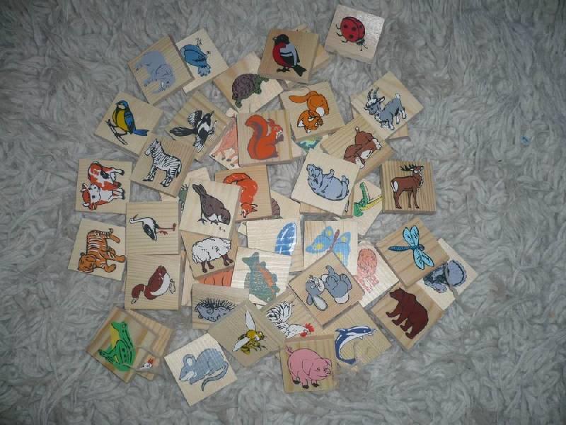 """Иллюстрация 1 из 13 для Лото """"Животный мир"""" (6-2222-2)   Лабиринт - игрушки. Источник: Лора76756465"""