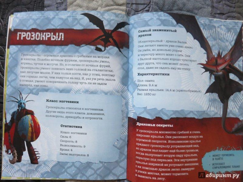 фото книги драконов из как приручить дракона предстоит