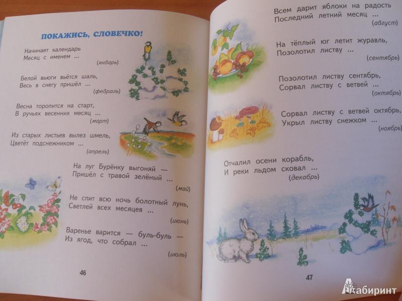 Иллюстрация 10 из 14 для Чудеса вокруг - Владимир Степанов | Лабиринт - книги. Источник: knigolyub