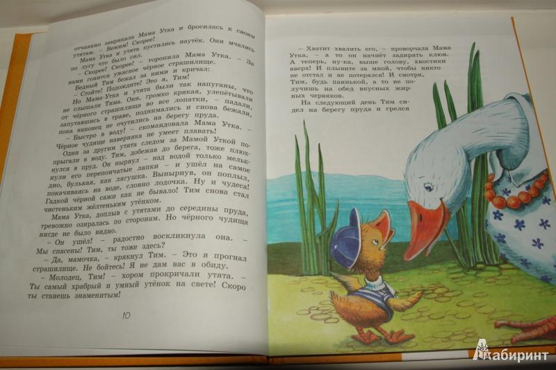 Иллюстрация 11 из 21 для Знаменитый утёнок Тим - Энид Блайтон   Лабиринт - книги. Источник: Павлинова  Ирина Евгеньевна