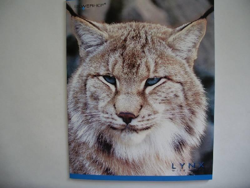 """Иллюстрация 1 из 2 для Тетрадь 48 листов """"Дикие кошки"""" (811042-51)   Лабиринт - канцтовы. Источник: Tiger."""