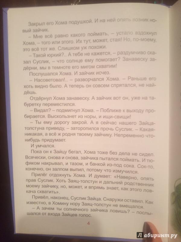 Иллюстрация 14 из 22 для Солнечный зайчик Хомы и Суслика - Альберт Иванов | Лабиринт - книги. Источник: Ксения В.