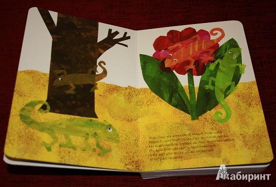 Иллюстрация 3 из 13 для Мечтательный хамелеон - Эрик Карл | Лабиринт - книги. Источник: КНИЖНОЕ ДЕТСТВО