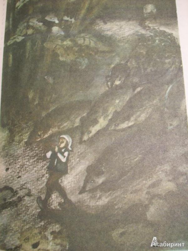 Иллюстрация 6 из 27 для Удивительное путешествие Нильса Хольгерссона с дикими гусями по Швеции - Сельма Лагерлеф | Лабиринт - книги. Источник: Львова  Ирина