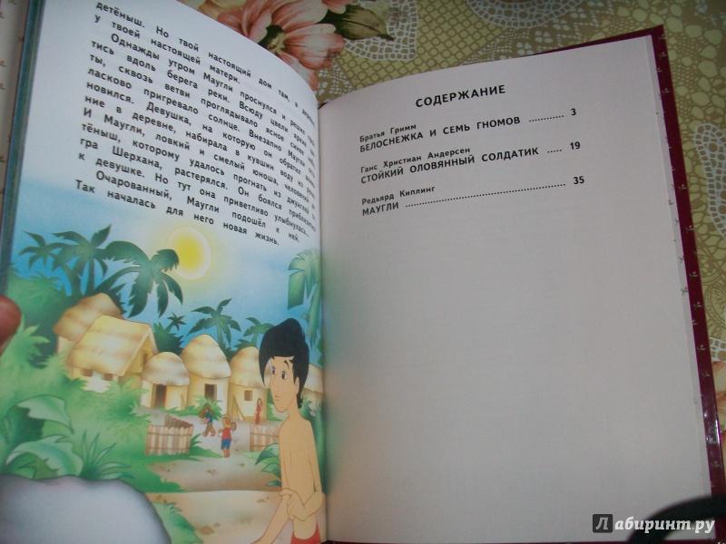 Иллюстрация 15 из 19 для Белоснежка и семь гномов и другие сказки - Гримм, Киплинг, Андерсен   Лабиринт - книги. Источник: Надежда