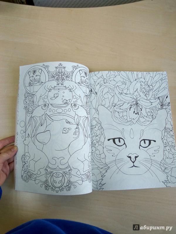 Иллюстрация 44 из 53 для Кототерапия. Раскраска-антистресс ...