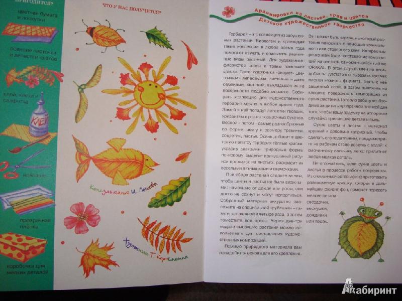 Иллюстрация 1 из 22 для Мастерилка № 7. Листья, травы, семена. Аппликация из листьев - Татьяна Рогаткина   Лабиринт - книги. Источник: Ирчик