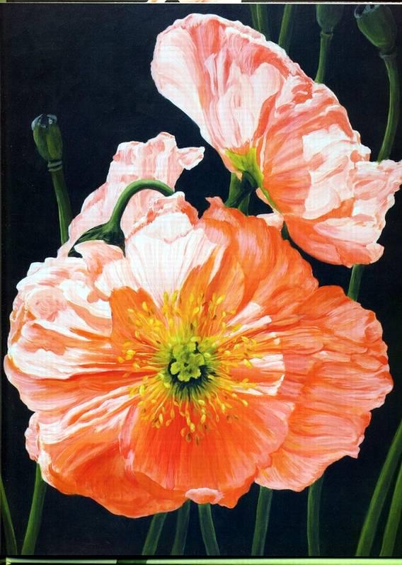 Иллюстрация 6 из 20 для Акриловая живопись. Рисуем цветы - Лекси Санделл | Лабиринт - книги. Источник: * Ольга *