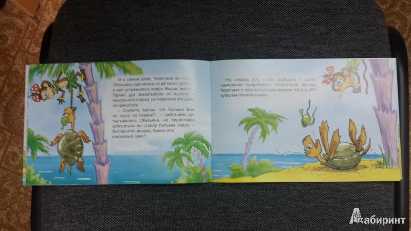 Иллюстрация 24 из 25 для Обезьяна и черепаха - С. Рунге | Лабиринт - книги. Источник: Журавлёва  Ирина