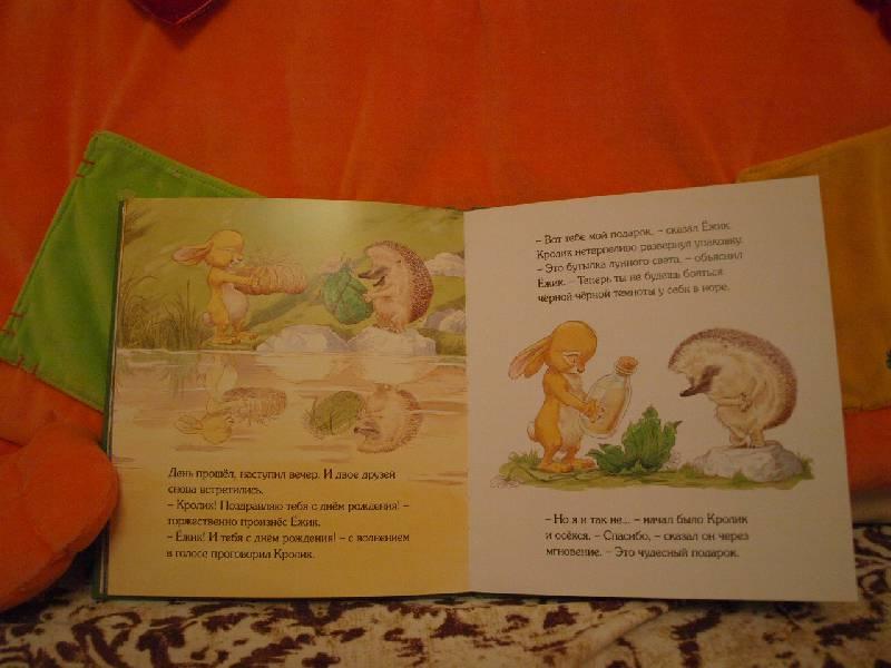 Иллюстрация 27 из 44 для Подарки в День рождения - Пол Стюарт | Лабиринт - книги. Источник: конева  екатерина николаевна