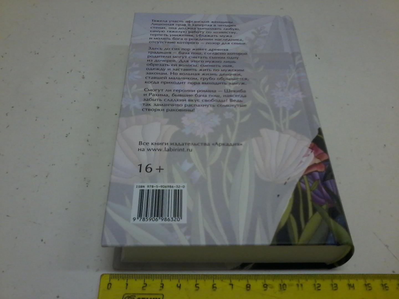 Иллюстрация 11 из 33 для Жемчужина, сломавшая свою раковину - Надя Хашими | Лабиринт - книги. Источник: Воздух