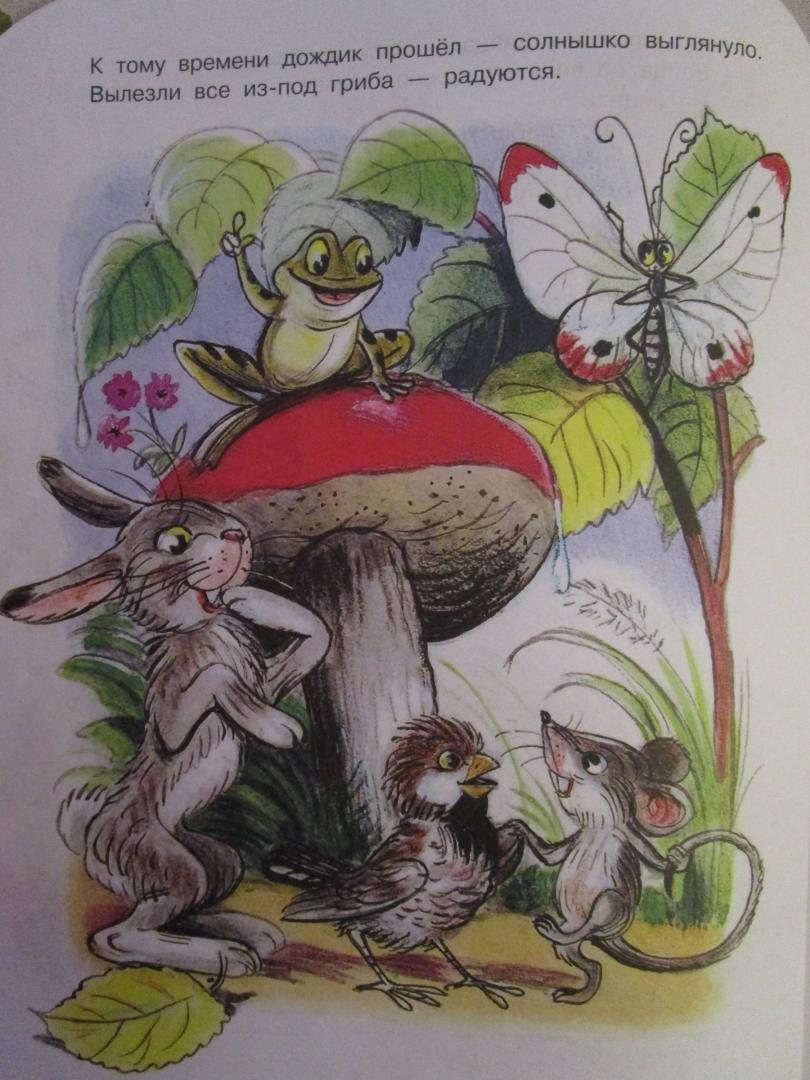 Иллюстрация 8 из 18 для Под грибом - Владимир Сутеев | Лабиринт - книги. Источник: Лабиринт