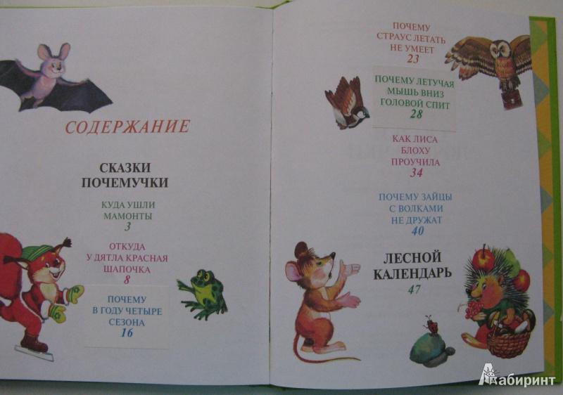 Иллюстрация 8 из 27 для Сказки почемучки, Лесной календарь - Тамара Крюкова | Лабиринт - книги. Источник: Уткина  Любовь