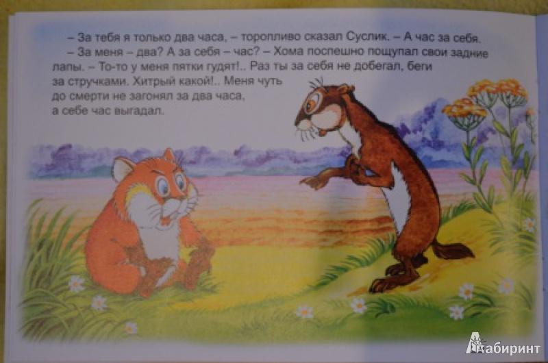 Иллюстрация 8 из 47 для Как Хома на дальнее поле за рощу ходил - Альберт Иванов | Лабиринт - книги. Источник: Moonlight2