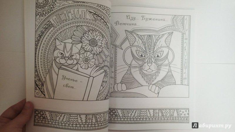 Иллюстрация 4 из 23 для Котомудрости. Раскраска для ...