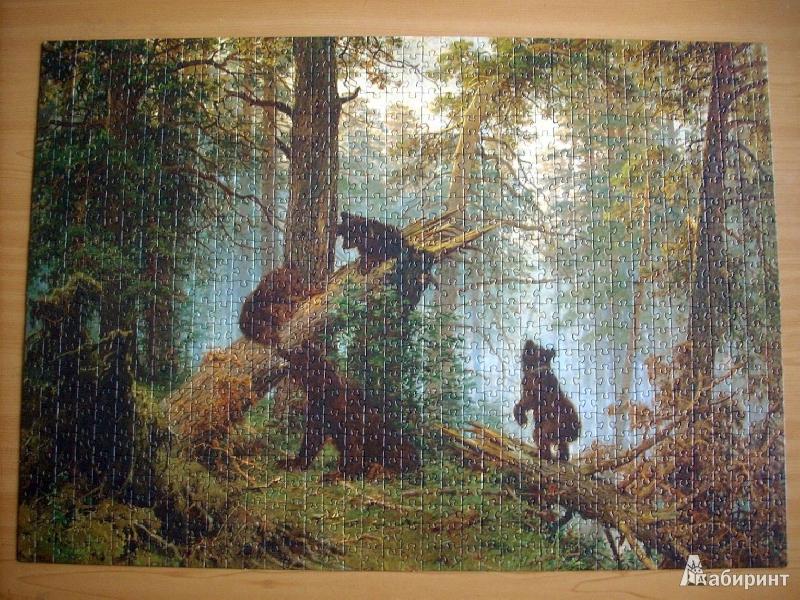 Иллюстрация 1 из 16 для Step Puzzle-1000 Утро в сосновом лесу (79203) | Лабиринт - игрушки. Источник: НеБлондинка