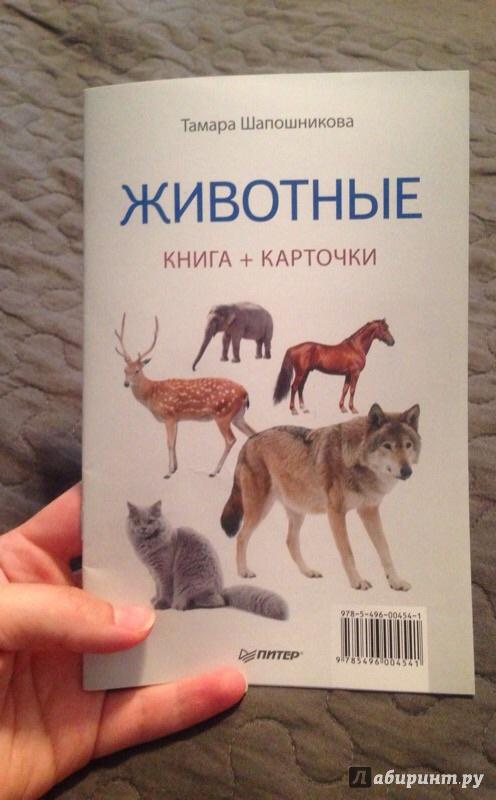 Иллюстрация 2 из 6 для Животные. Книга + карточки - Тамара Шапошникова | Лабиринт - игрушки. Источник: Ttoma