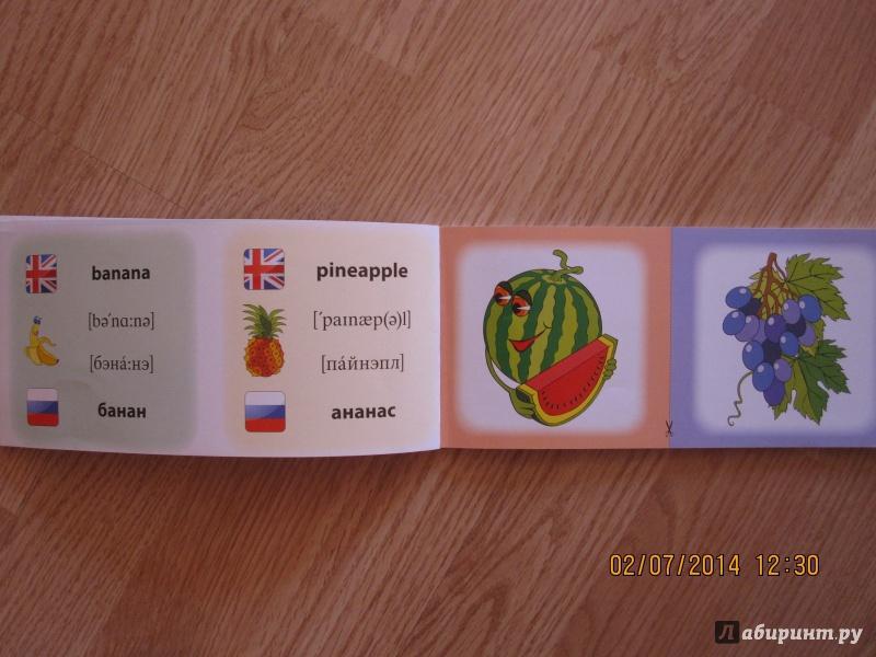 Иллюстрация 5 из 16 для Овощи. Фрукты. Коллекция карточек - Лариса Зиновьева | Лабиринт - книги. Источник: Русских  Юлия