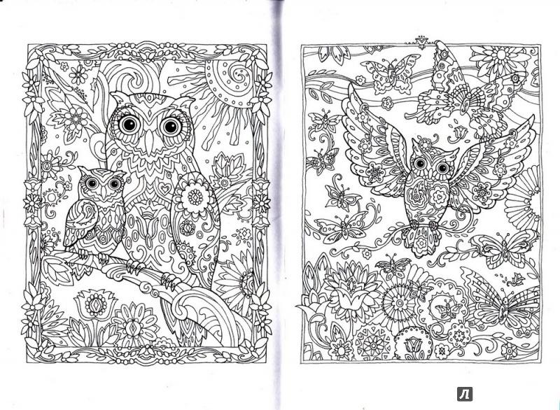 картинки для распечатки и раскраски в блокнот совушки ещё один вид