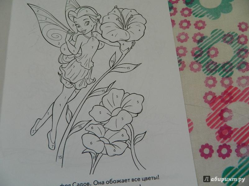 Иллюстрация 1 из 12 для Феи. Раскрась по номерам (№1402)   Лабиринт - книги. Источник: Nnatalek